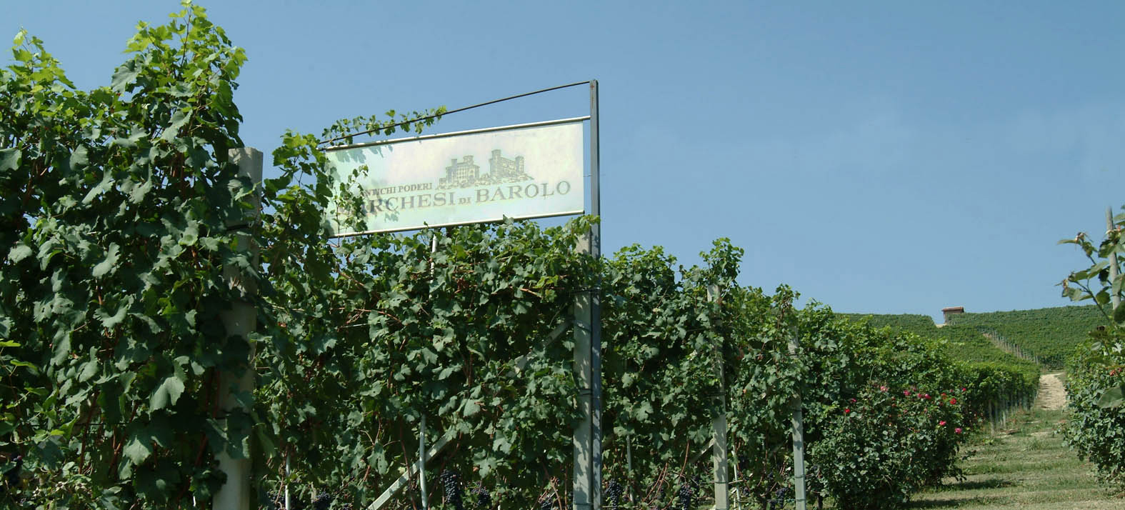 Marchesi di Barolo Winery